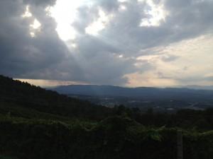 Carter's Mountain View- Rachael Dymski