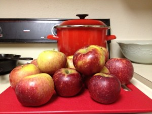 Apples- Rachael Dymski